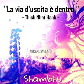 Shambo1X
